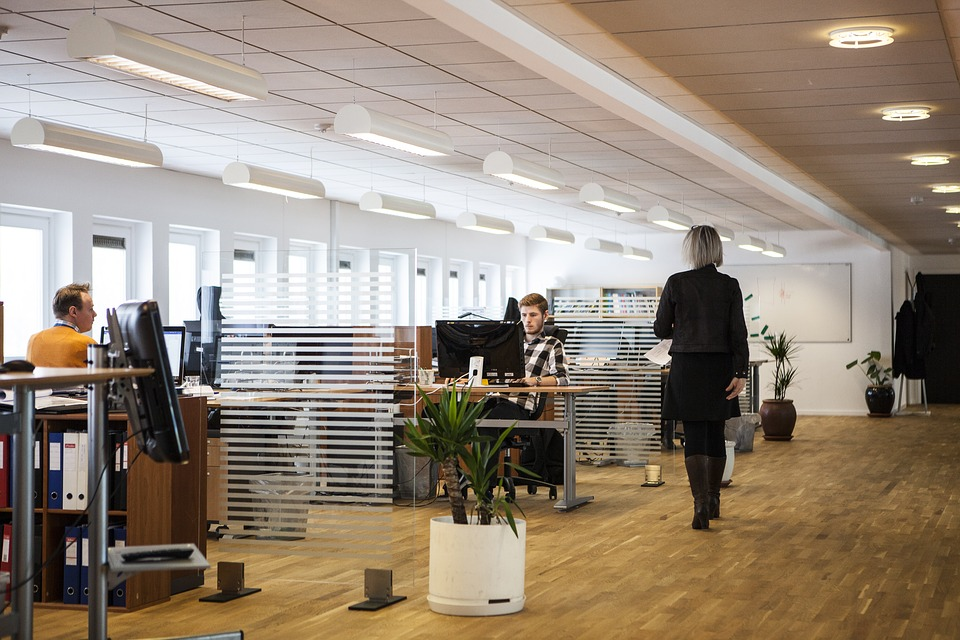 biuro w open space
